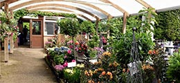 Langlands Loxley, Sheffield Garden Centre