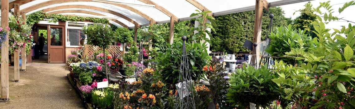 Langlands Garden Centre - Loxley, Sheffield