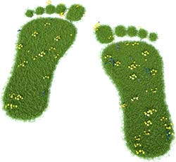We Work Hard to Reduce our Carbon Footprint