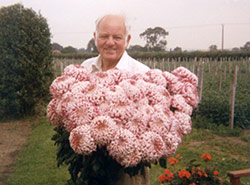 Walter, and his Prize-Winning Dahlias